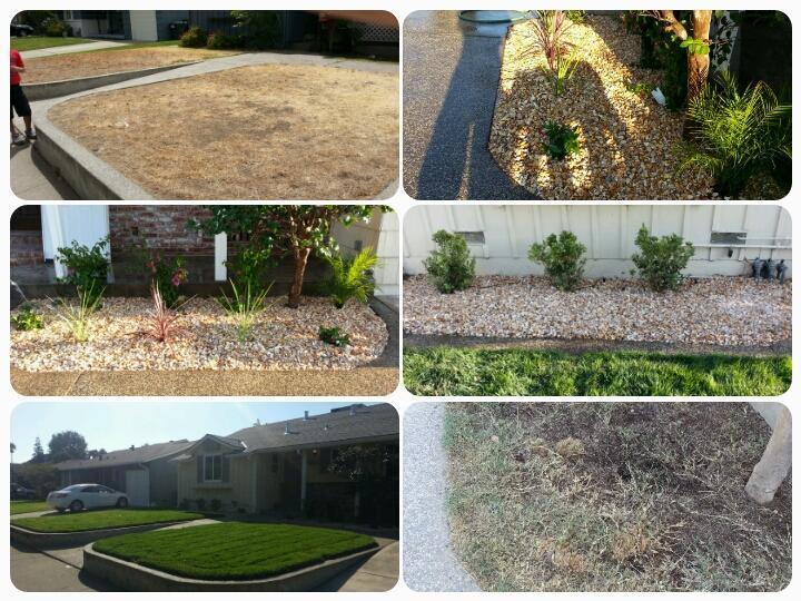 A. D. Landscape Service