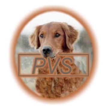 Powell Veterinary Service