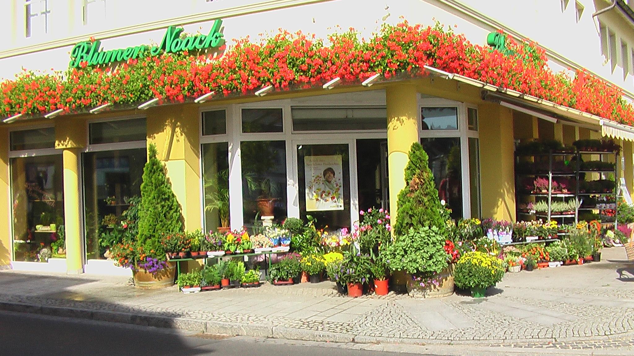 Blumen Noack Inh. Steffi Noack
