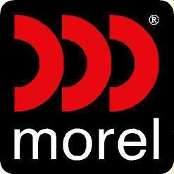 Morel America