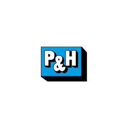 Bild zu P&H Gabelstapler und Baumaschinen GmbH in Zeitz