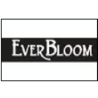 Ever-Bloom - Omaha, NE - Florists