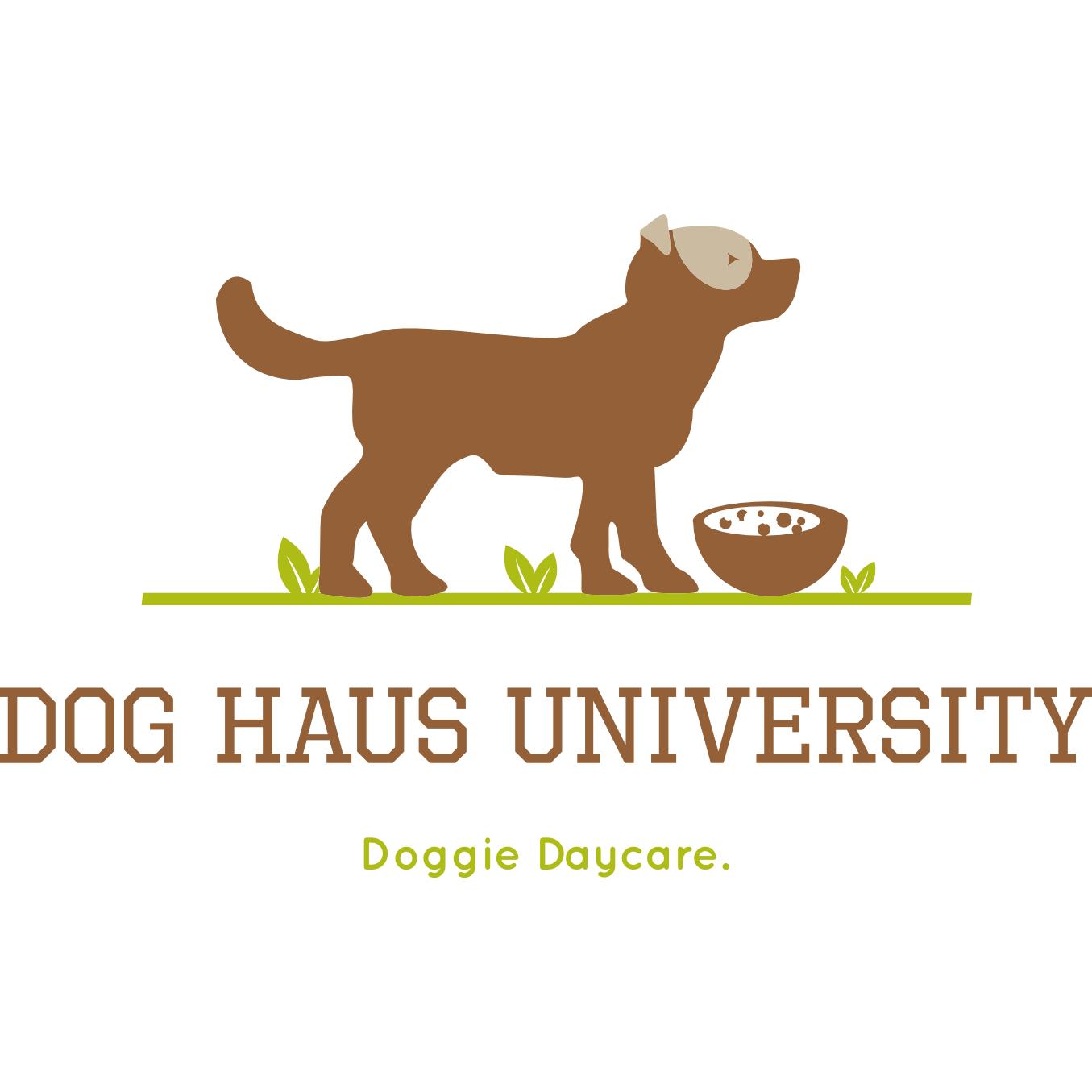 dog haus university in madison wi 53703. Black Bedroom Furniture Sets. Home Design Ideas