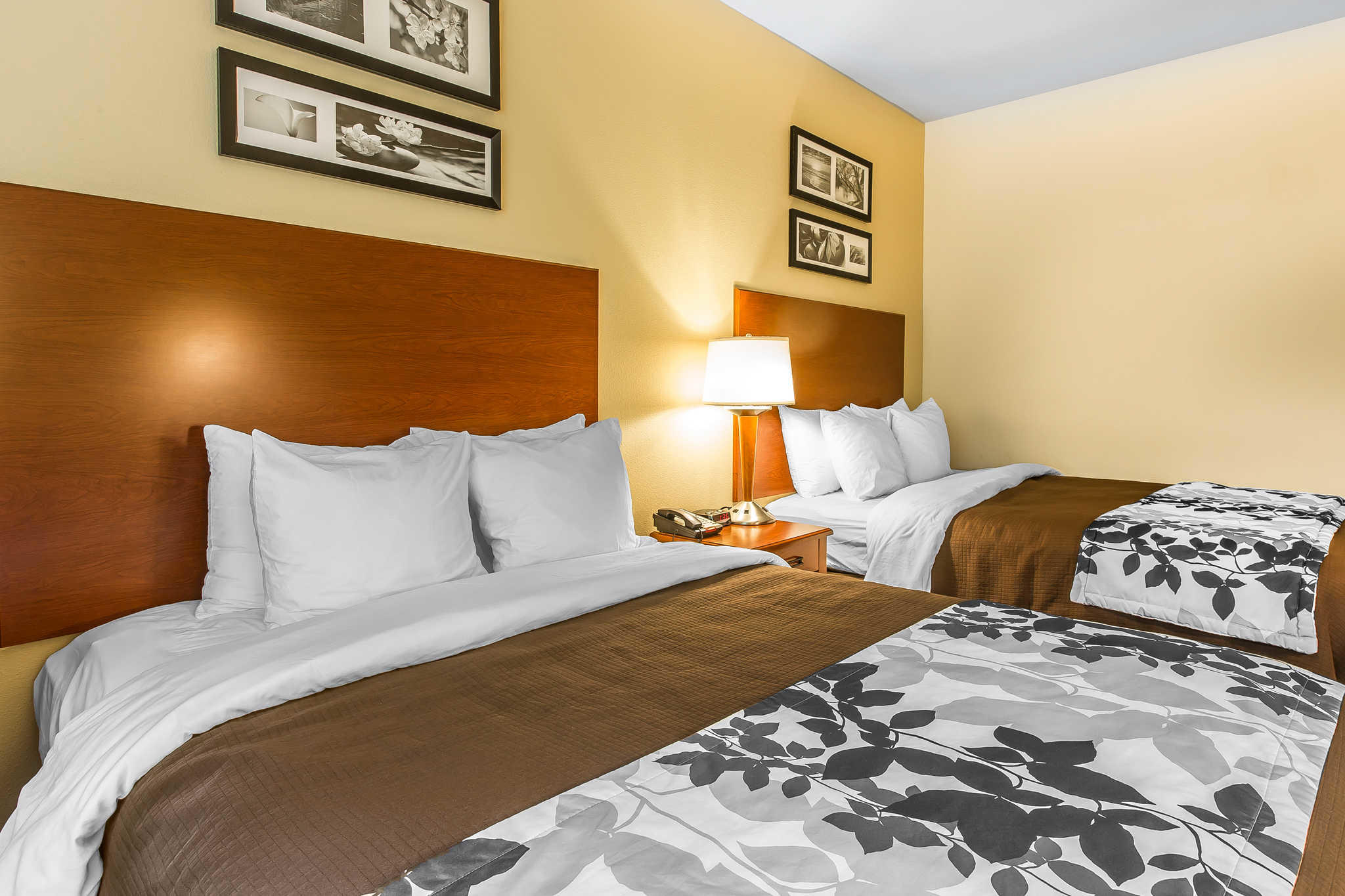 Hotel Room Commerce Ga