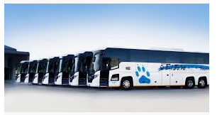 Eljosa Travel & Tours (Pty) Ltd