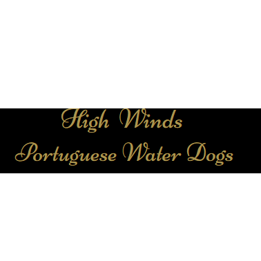 High-Winds Portuguese Water Dogs - Freeland, MI - Breeders