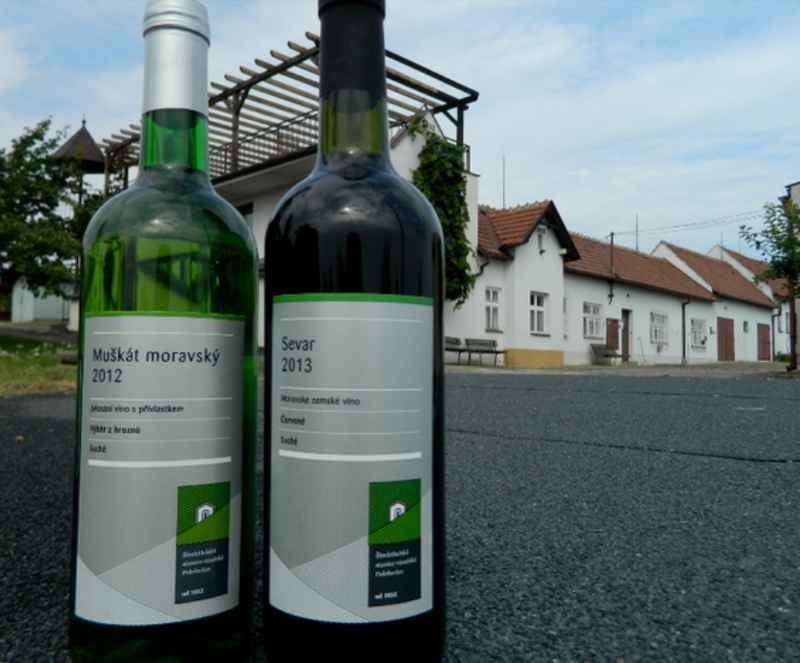 Šlechtitelská stanice vinařská, s.r.o.