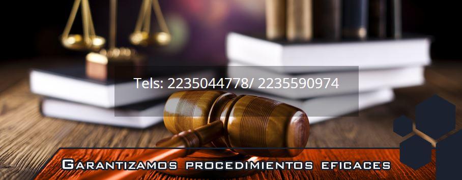 ABOGADO FEDERICO ROBLEDO - CARMONA Y ASOCIADOS