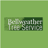 Bellweather Tree Service