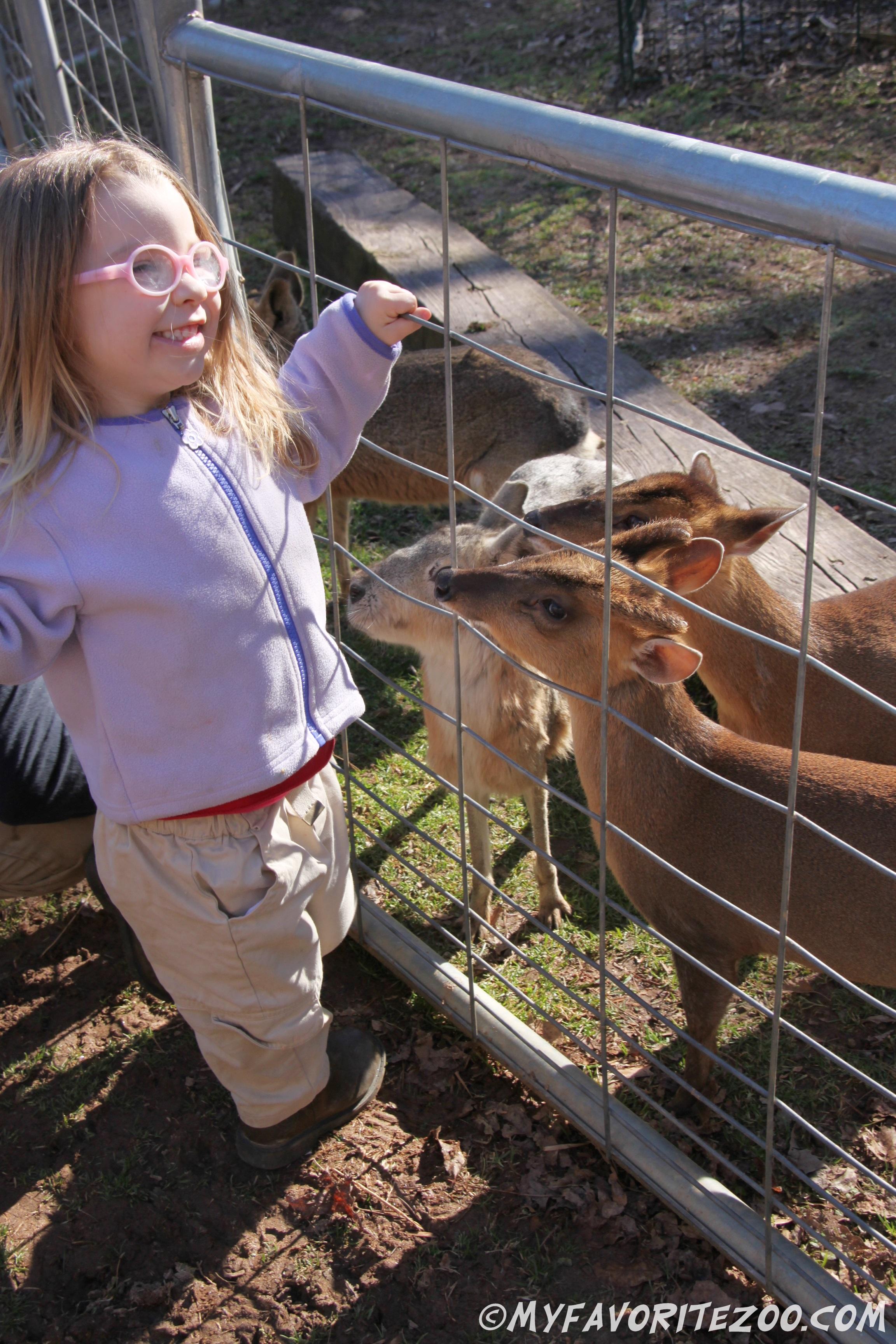 North georgia zoo coupons