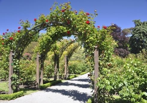 Giardinaggio Idealgarden