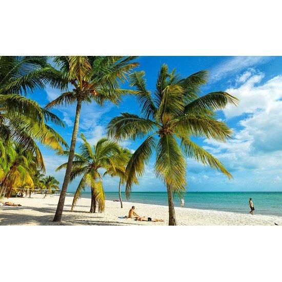 Sunshine Resort - Key West, FL - Cruises & Tours