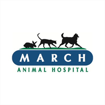 March Animal Hospital - Arlington Heights, IL 60005 - (847)754-4977 | ShowMeLocal.com