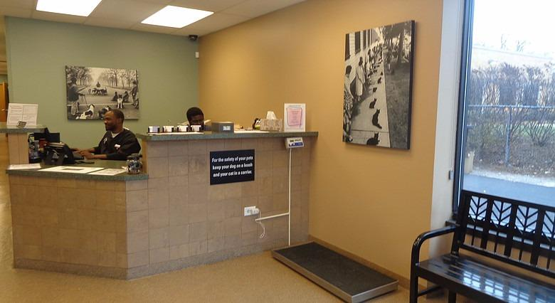 Image Result For Hyde Park Animal Clinic On Stony Island