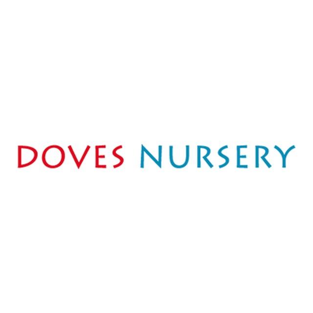 Doves Nursery