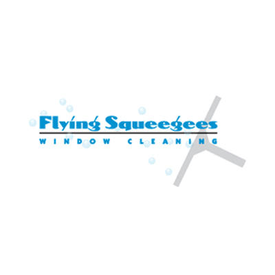 Flying Squeegees - Evans City, PA 16033 - (724)814-4872 | ShowMeLocal.com