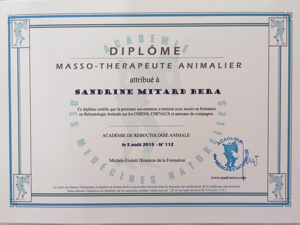 BEMER partner/Reboutologue Mitard-Béra Sandrine