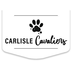 Carlisle Cavaliers