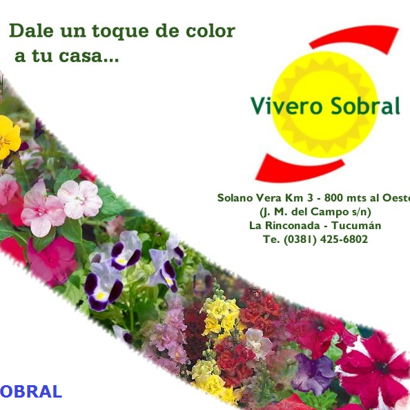 Vivero Sobral