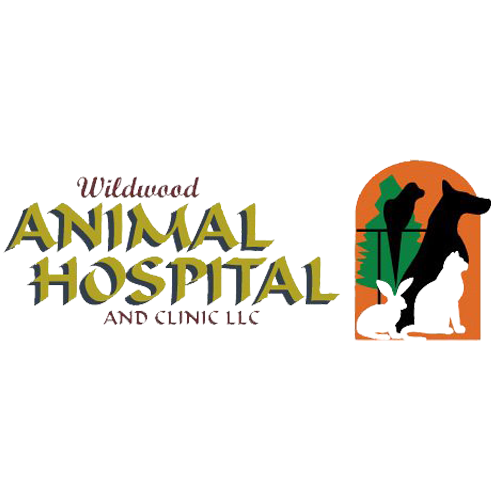 Wildwood Animal Hospital & Clinic LLC - Marshfield, WI - Veterinarians