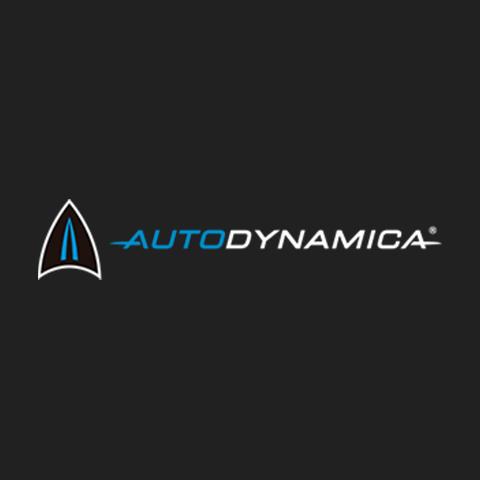 Autodynamica