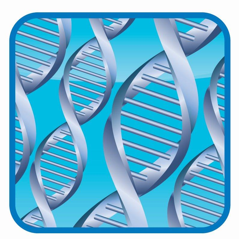DNA Paternity Testing Centers