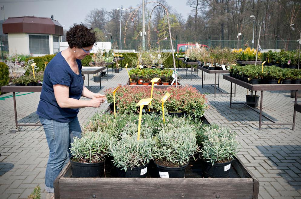 Zahradní centrum Opava