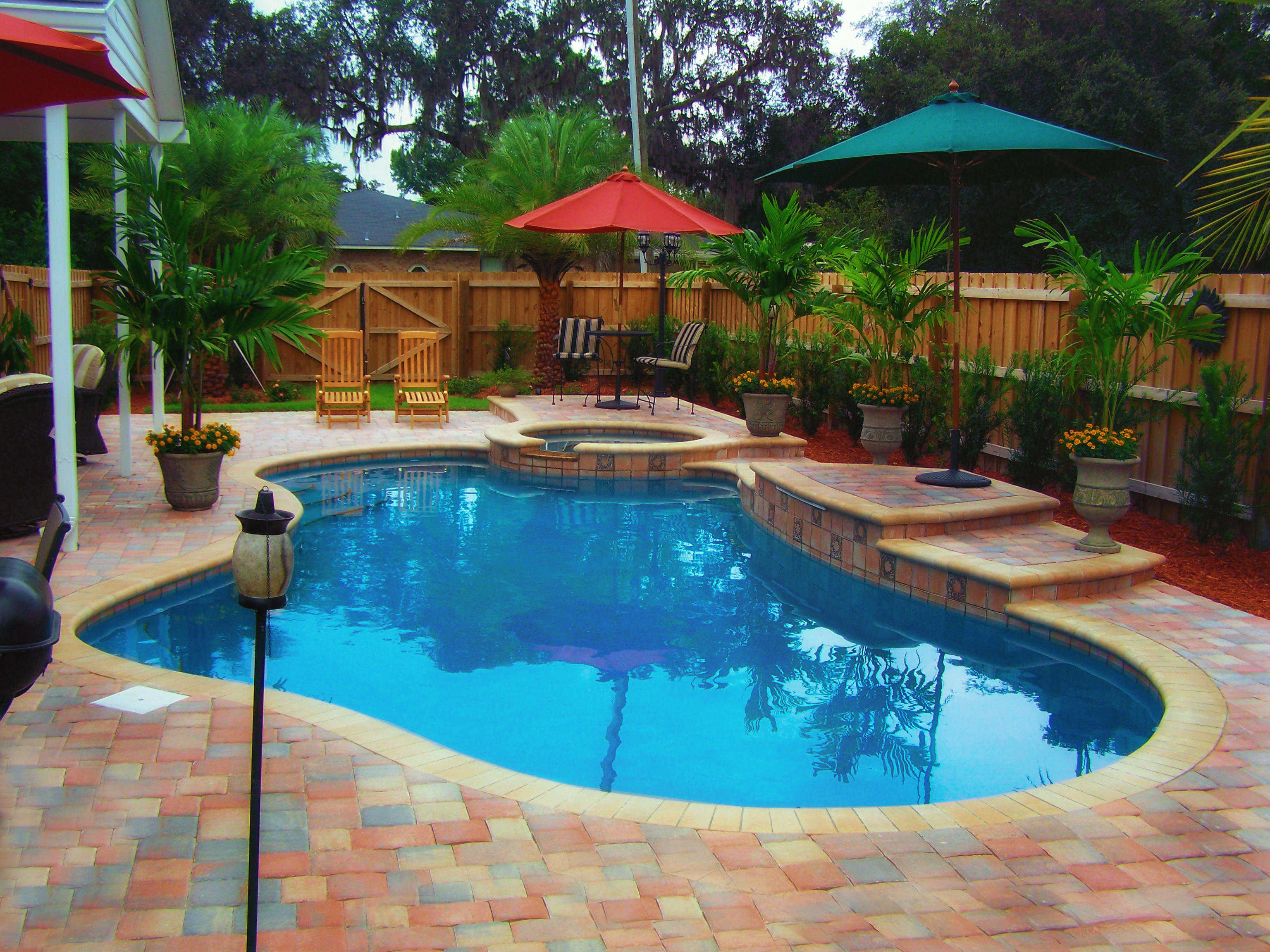 Paradise pool service jacksonville florida fl for Pool design services