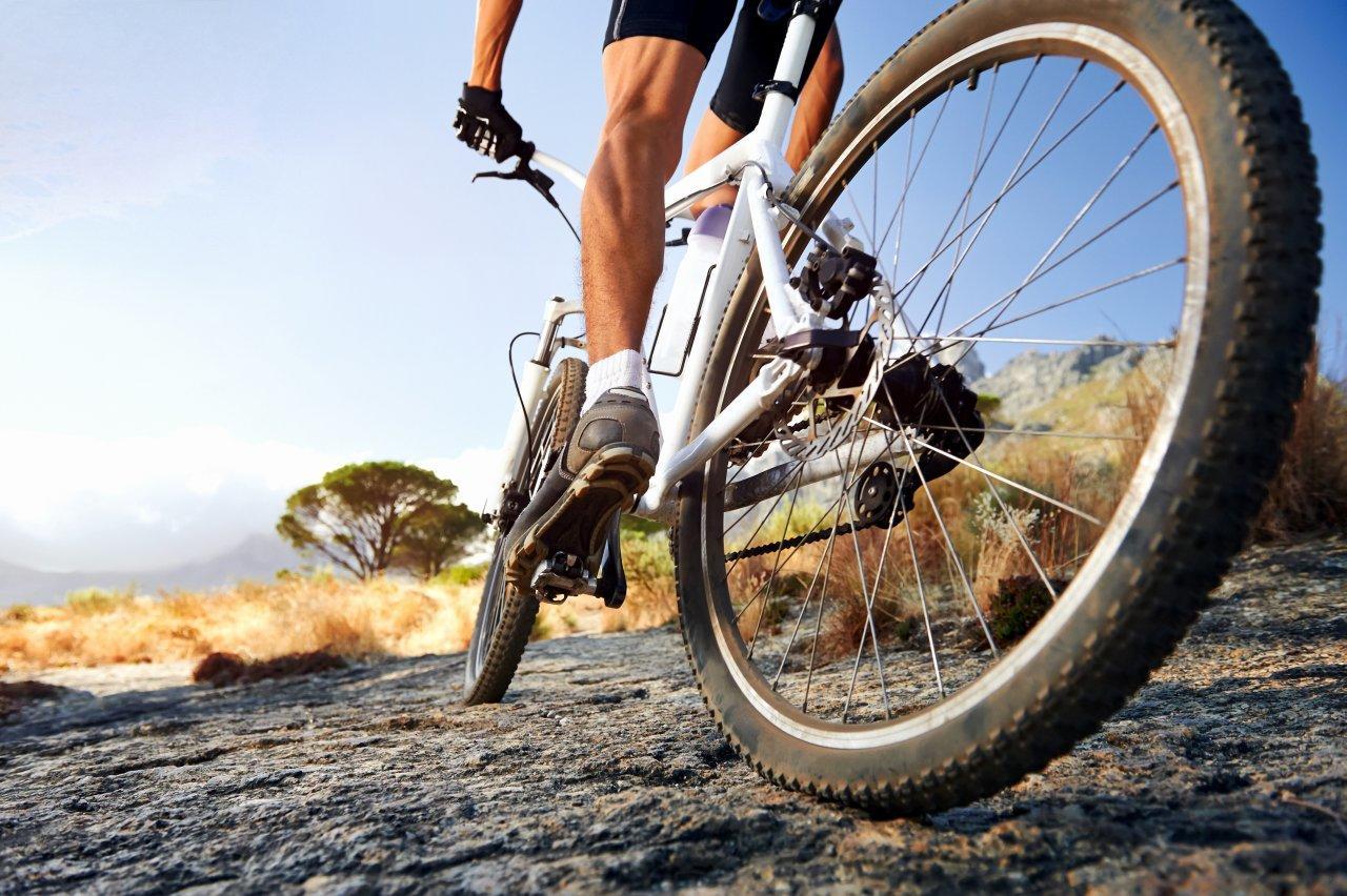 Serwis i sprzedaż rowerów - Sprzedaż nart