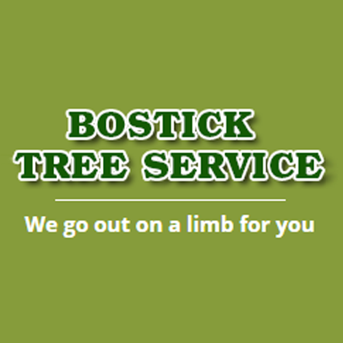 image of the Bostick Tree Service