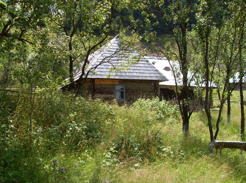 Vysočinská lesní s.r.o.