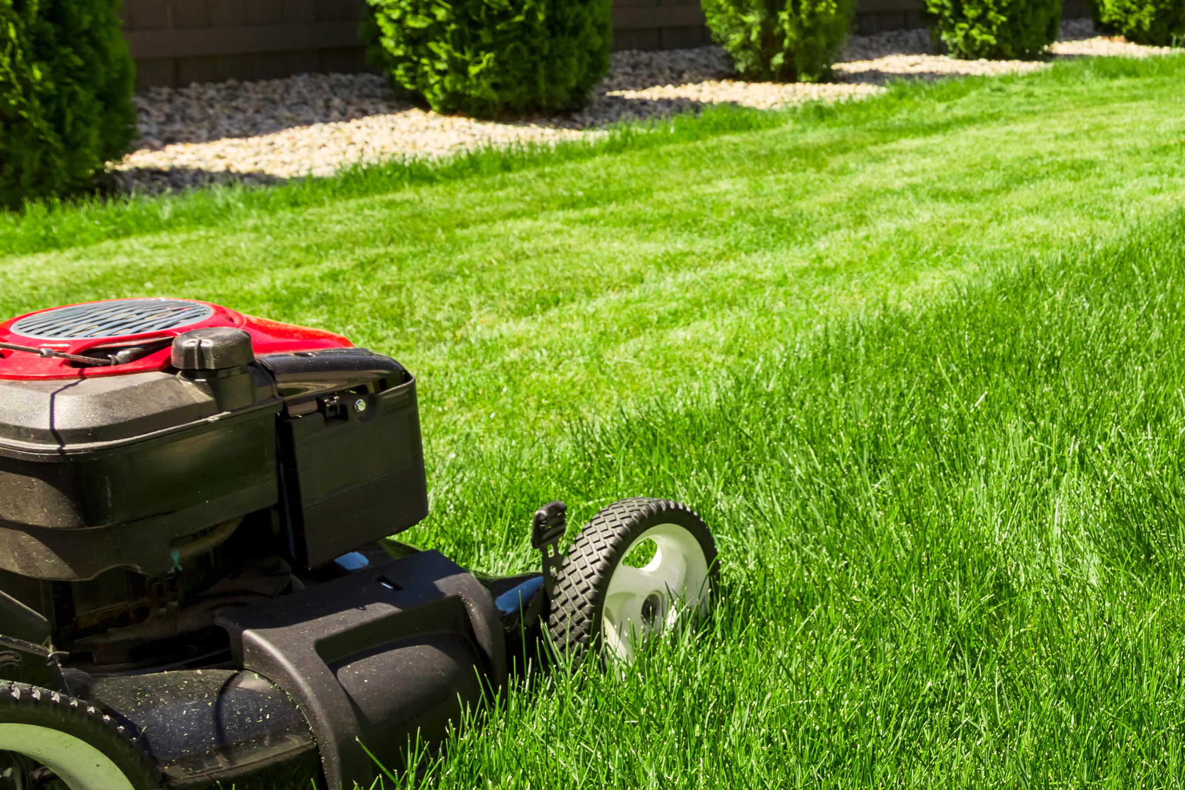 Kojack's Lawn Service