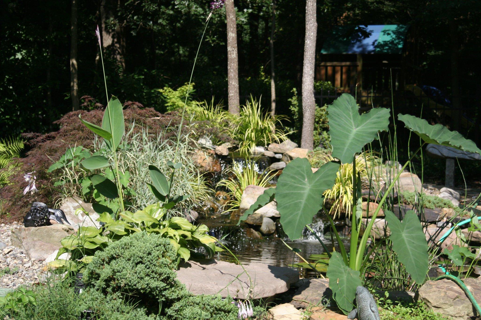 Barnhardt landscaping design inc matthews north for Landscape design inc