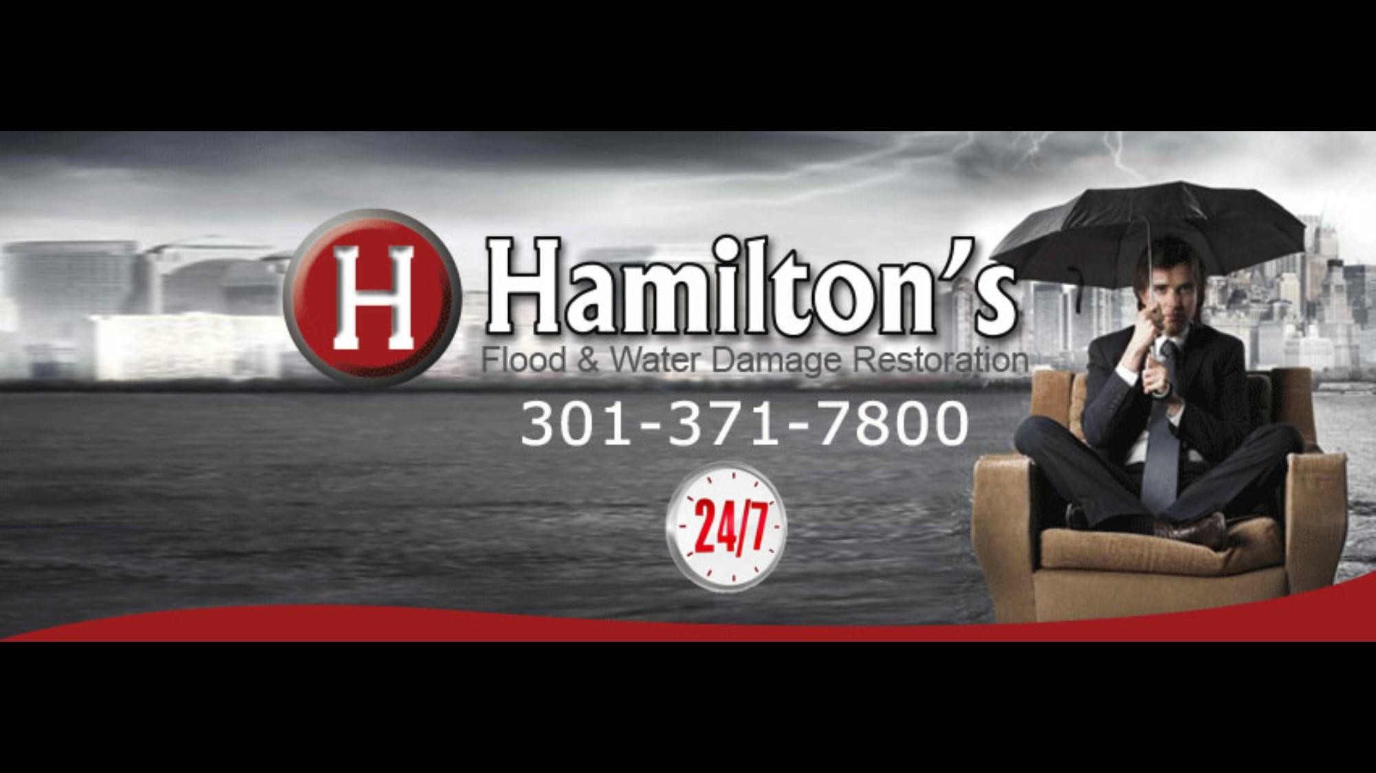 Hamilton's Unlimited, LLC