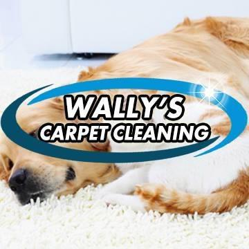 Wally's Carpet Cleaning
