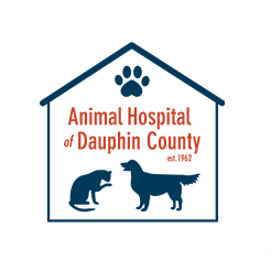 Animal Hospital of Dauphin County - Harrisburg, PA 17112 - (717)775-7554 | ShowMeLocal.com