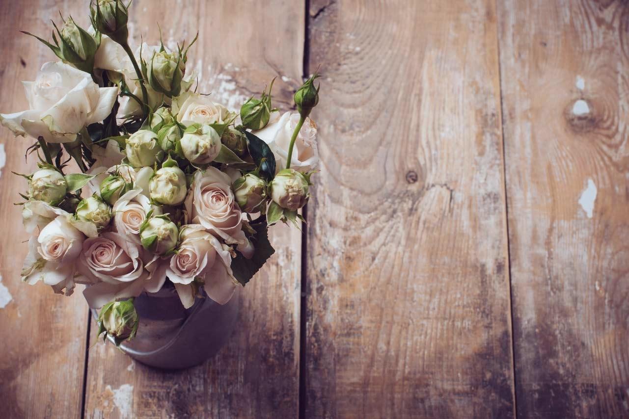 Mckenna Florists By Kevin Camara à Mont-Royal