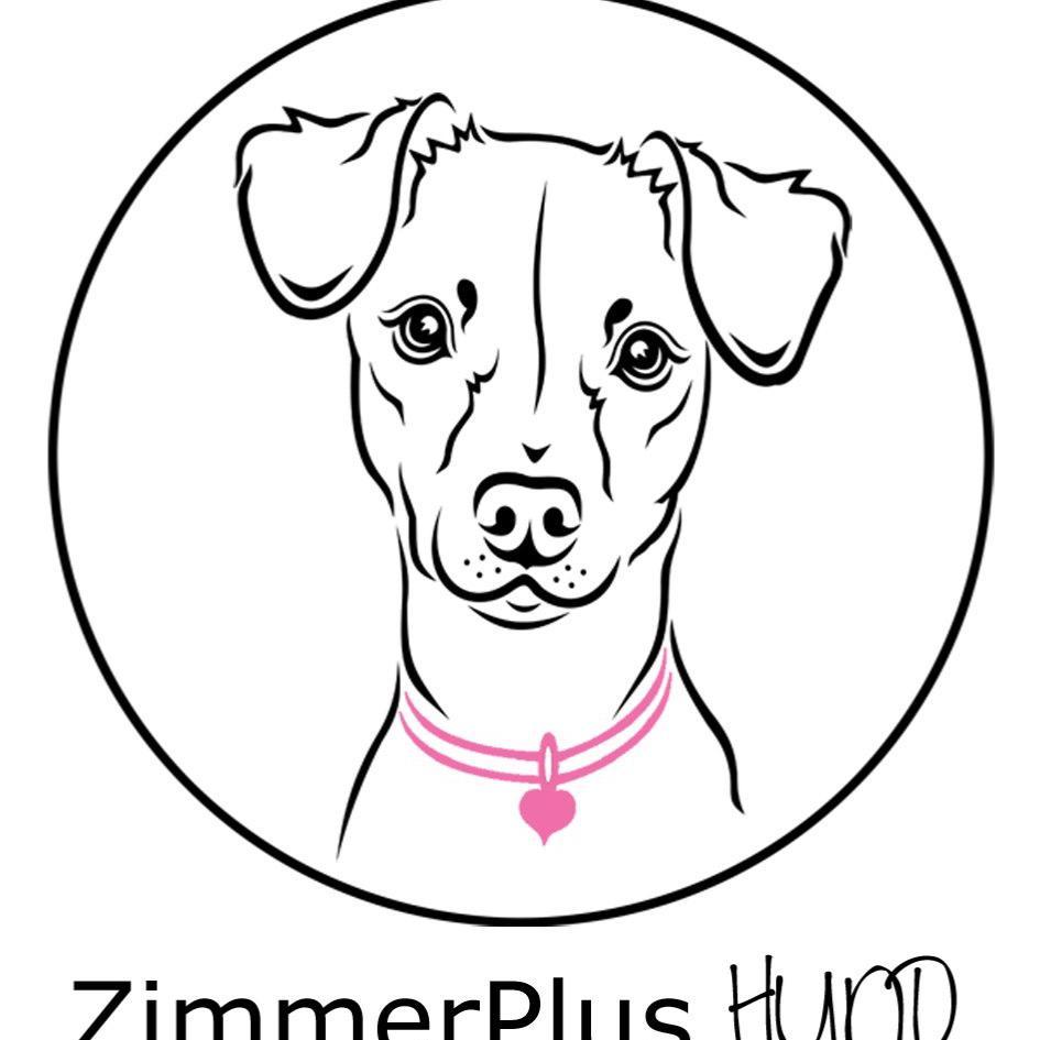 Bild zu ZimmerPlus+ Hund Inh. Christin Venske in Schenefeld Bezirk Hamburg
