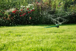 You can count on us to help you determine what aspects of your irrigation system are failing and to provide effective solutions with our irrigation analysis services in Lakeland, FL.