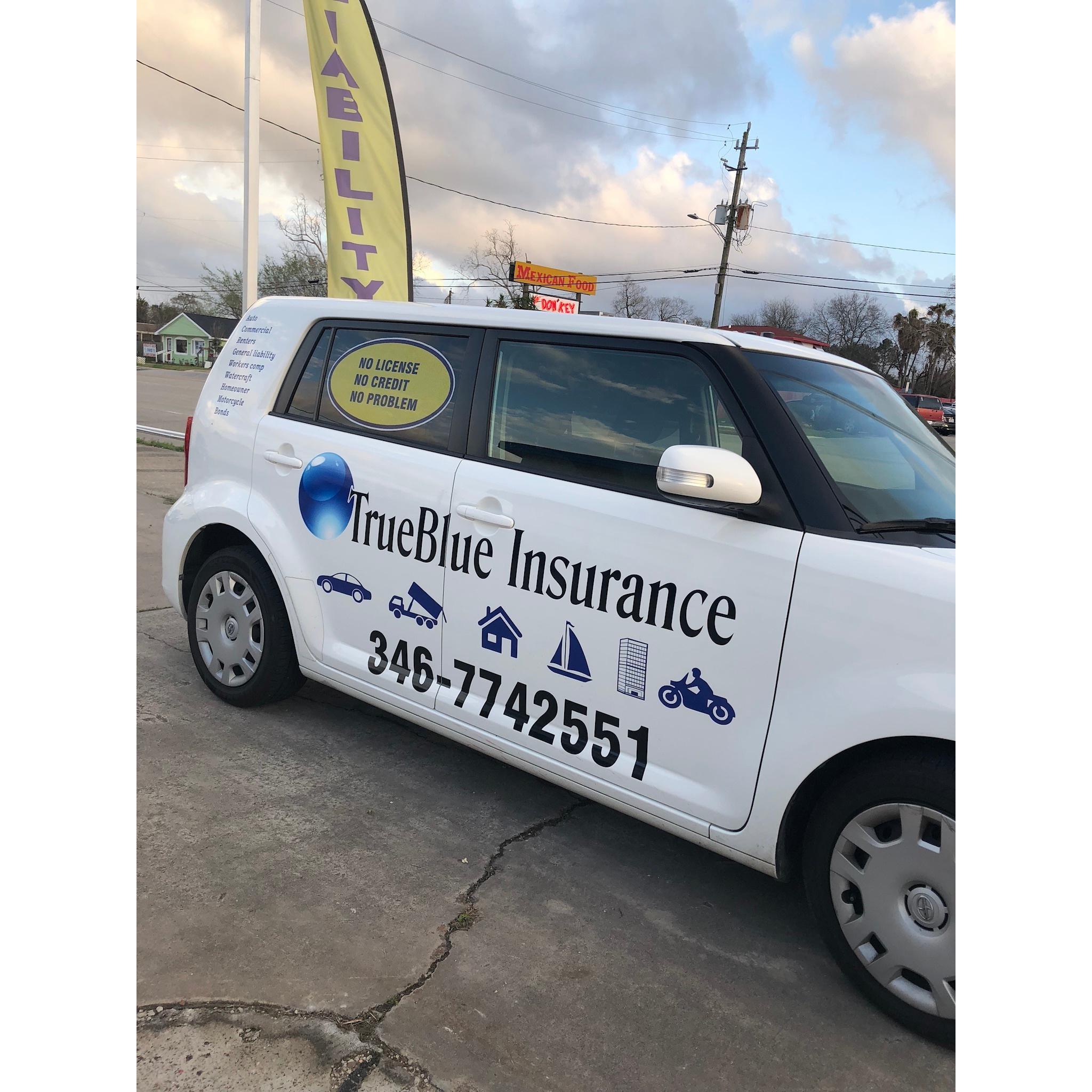 TrueBlue Insurance - Pasadena, TX 77505 - (346)774-2551   ShowMeLocal.com