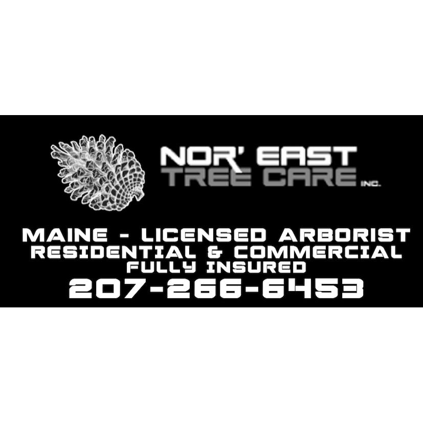 Nor' East Tree Care Inc