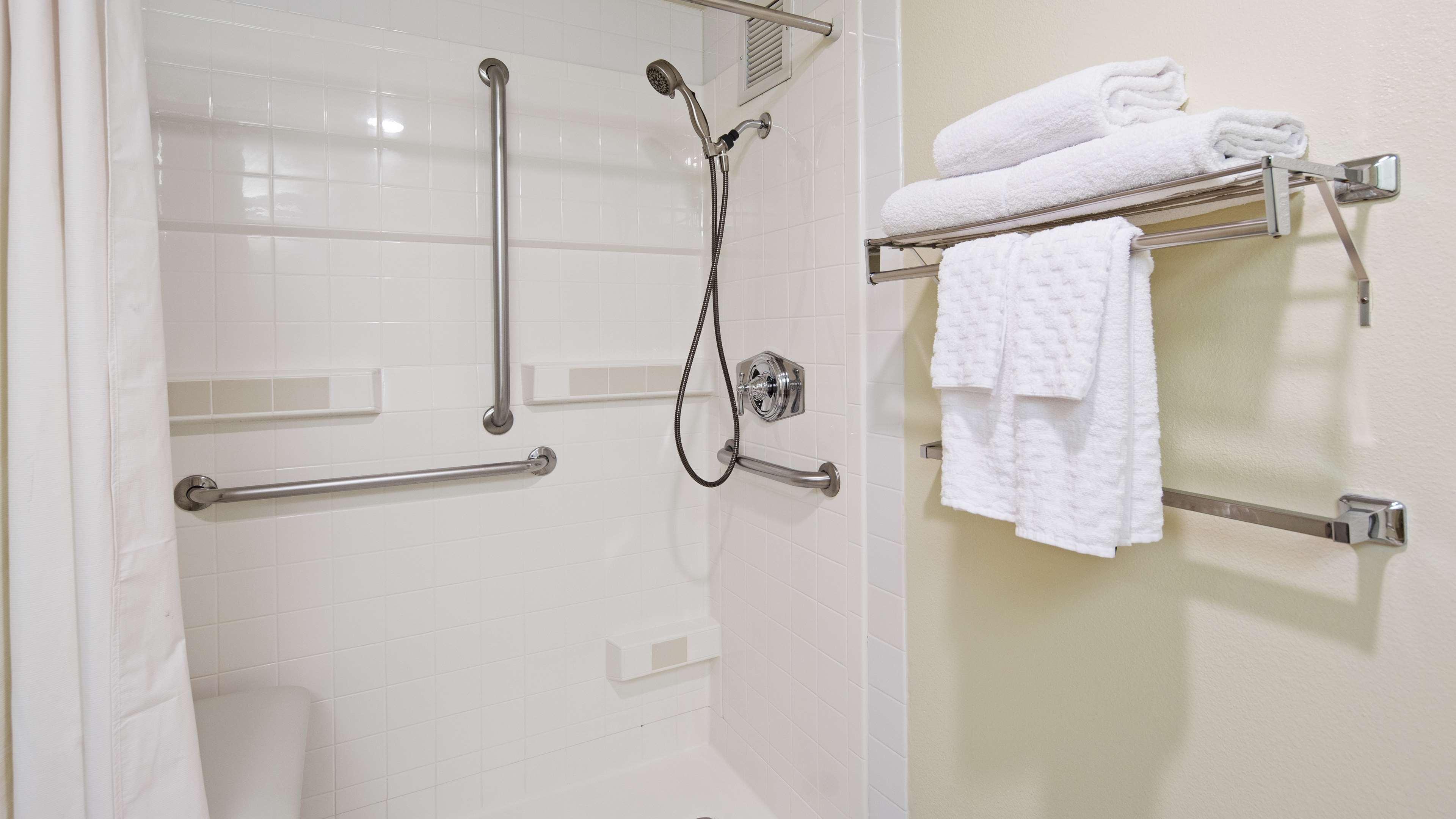 ADA Roll in Shower