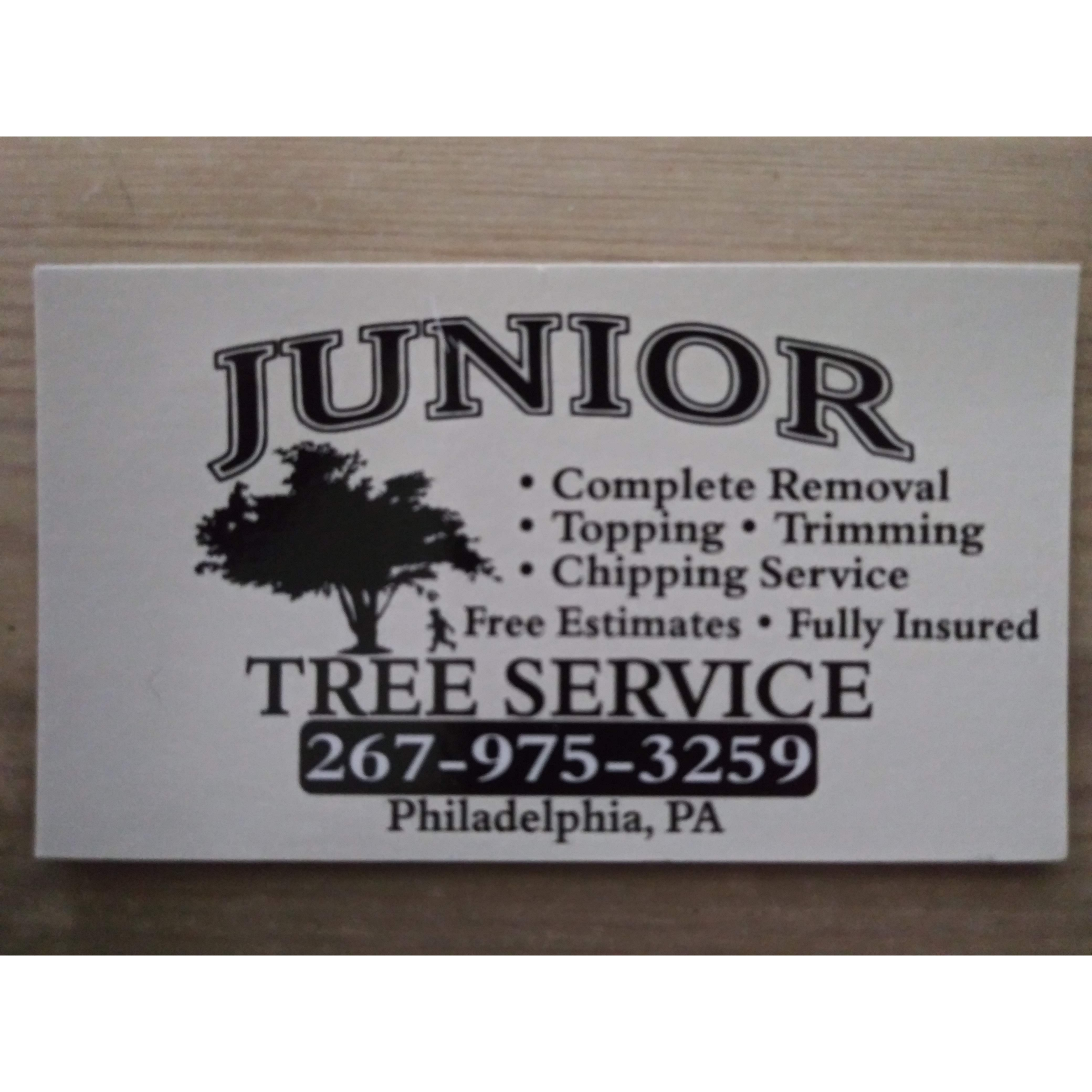 Junior Tree Service