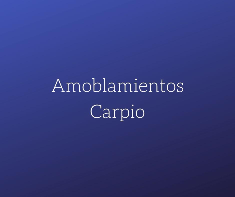 AMOBLAMIENTOS CARPIO