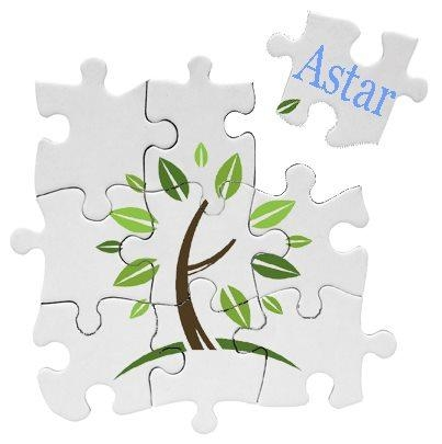 Astar Abatement Inc
