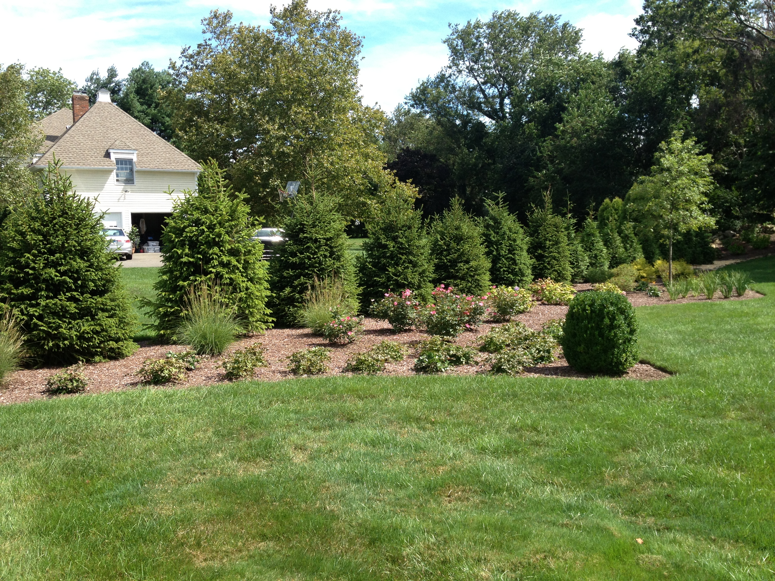 Riccio Landscaping & Tree Service image 10