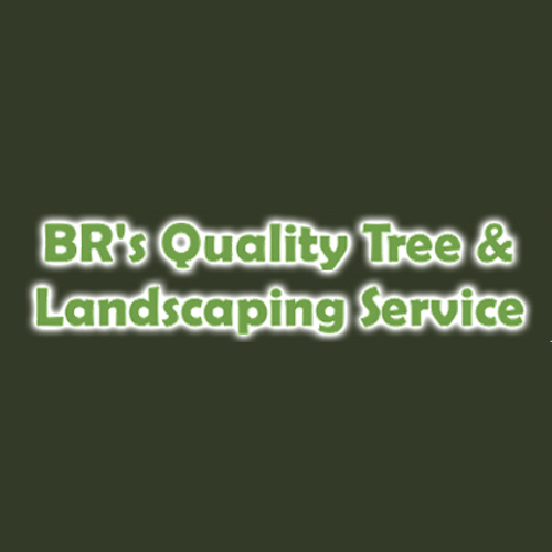 BR's Quality Tree & Landscaping Service
