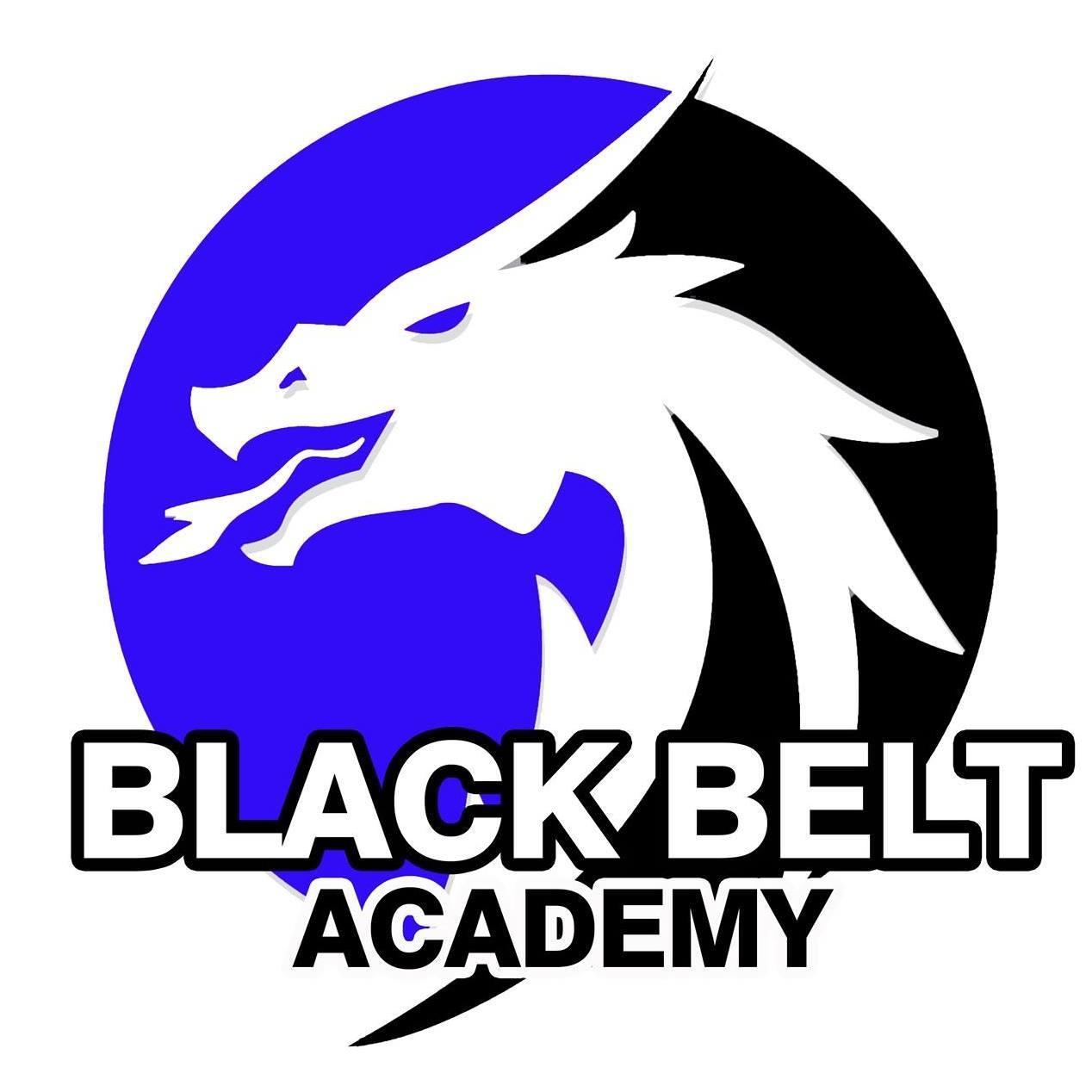 Harborne Blackbelt Academy