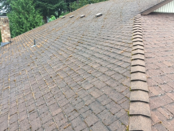 Grant Roofing Amp Pressure Washing Battle Ground Washington