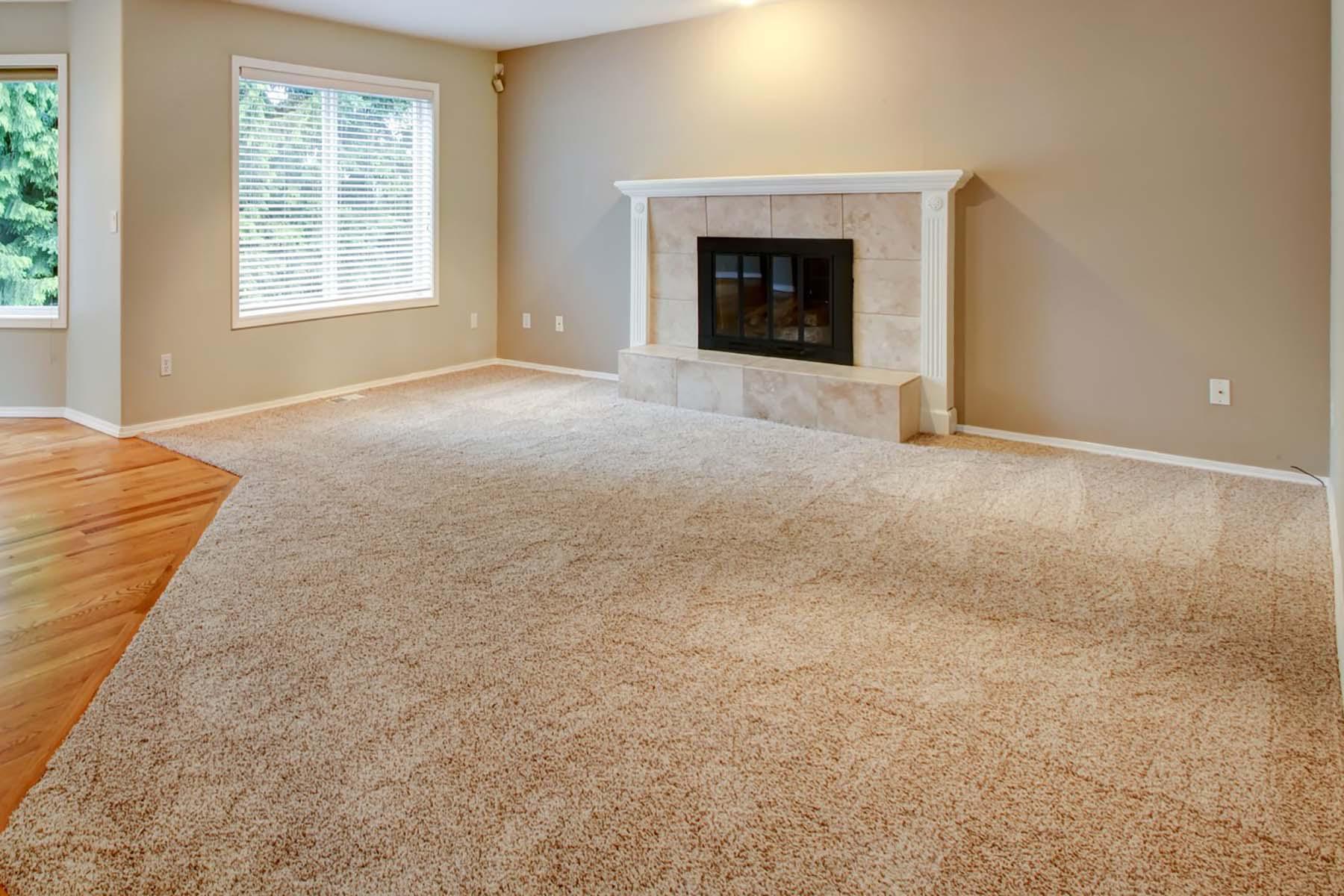 SaulClean - Carpet & Rug Dyeing